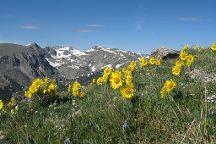 Rocky Mountain Conservancy Tours
