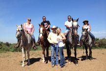 S&D Horseback Riding, Norco, United States