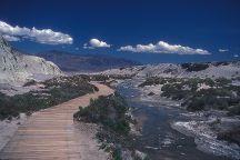 Salt Creek Interpretive Trail, Death Valley National Park, United States