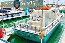 Salty Goat Fishing Charters