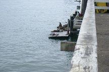 Santa Cruz Wharf, Santa Cruz, United States