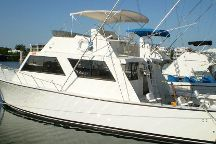 Scarlet Rose Charters