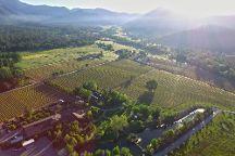 Schmidt Family Vineyards, Grants Pass, United States