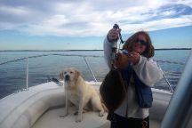 Sea Dog Fishing Team and Charters