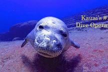 Seasport Divers