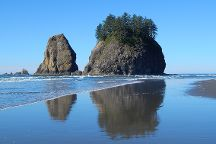 Second Beach Trail, Olympic National Park, United States