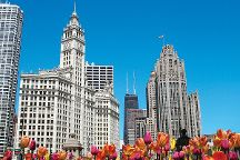See it All Chicago Tours, Chicago, United States