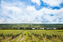 Seneca Lake Wine Trail, Watkins Glen, United States