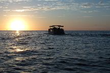 Shell Key Shuttle, St. Pete Beach, United States