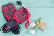Siesta Paddle Sports