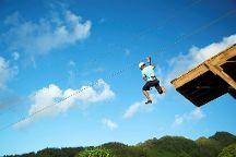 Skyline Eco-Adventures Haleakala