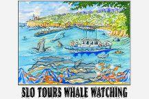 Slo.Tours, Avila Beach, United States