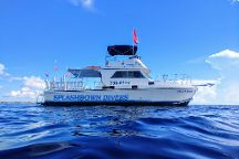 Splashdown Divers