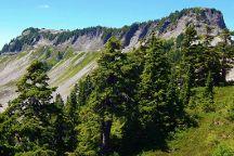 Table Mountain Glacier, Glacier, United States