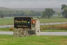 Tallgrass Prairie National Preserve, Strong City, United States