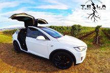 Tesla Winery Tours