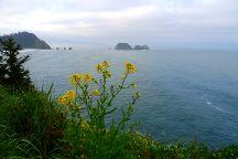 Three Capes Scenic Drive, Oregon Coast, United States