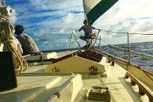 Tivoli Sailing Company, Kingston, United States