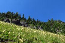 Tolmie Peak Trail, Mount Rainier National Park, United States