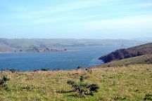 Tomales Point Trail, Point Reyes Station, United States