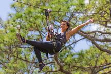 TreeUmph! Adventure Course, Bradenton, United States