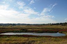 Tualatin River National Wildlife Refuge, Sherwood, United States