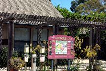 UCSC Arboretum, Santa Cruz, United States