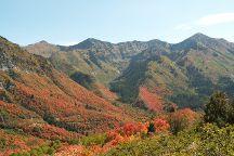 Uinta National Forest, Heber City, United States