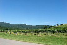 Virginia Blue Ridge Wine Tours