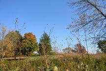 Volo Bog State Natural Area, Ingleside, United States
