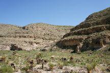 Walnut Canyon Desert Drive, Carlsbad Caverns National Park, United States