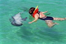 Water Planet, Panama City Beach, United States
