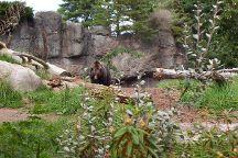 Woodland Park Zoo, Seattle, United States