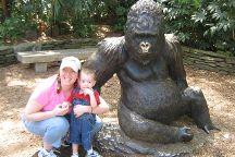 Zoo Atlanta, Atlanta, United States