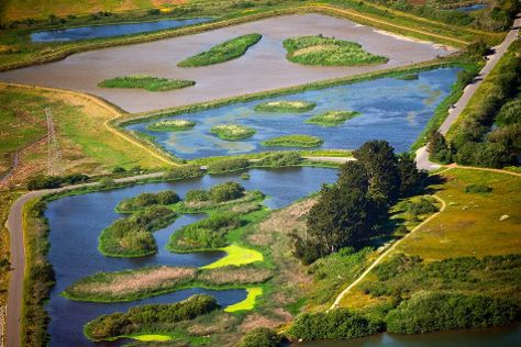 Arcata Marsh and Wildlife Sanctuary, Arcata, United States