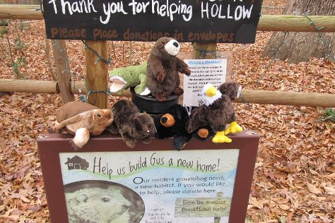 Bear Hollow Zoo, Athens, United States