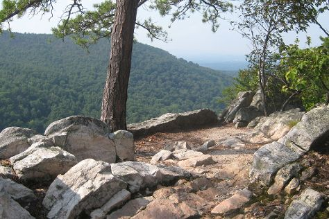 Buzzard Rock North, Front Royal, United States