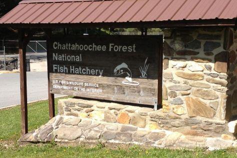 Chattahoochee National Forest, Clayton, United States