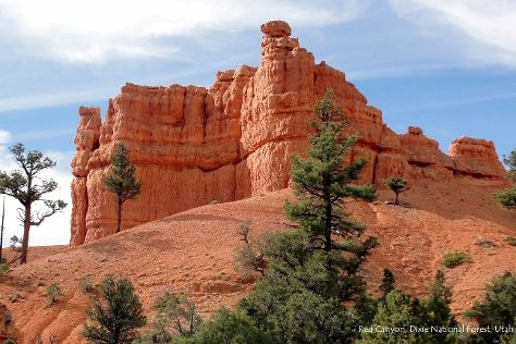 Dixie National Forest, Cedar City, United States