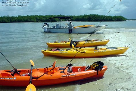 Everglades Area Tours, Everglades City, United States