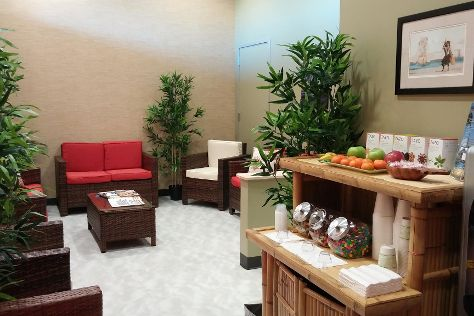 Hawaiian Experience Spa, Goodyear, United States