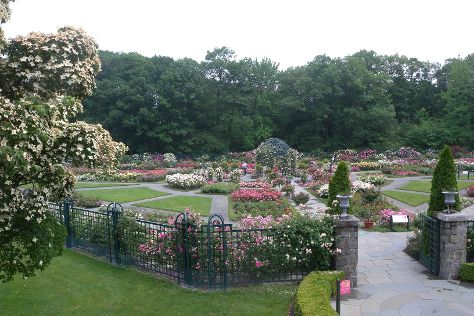 New York Botanical Garden, Bronx, United States