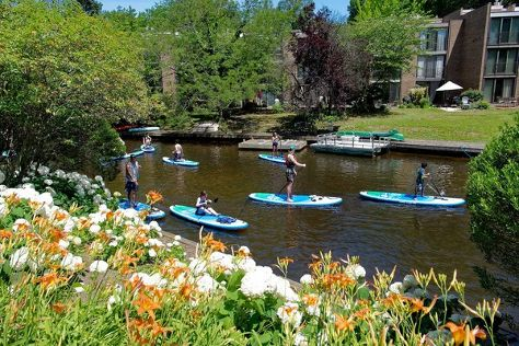 Surf Reston - Stand Up Paddleboarding, Reston, United States