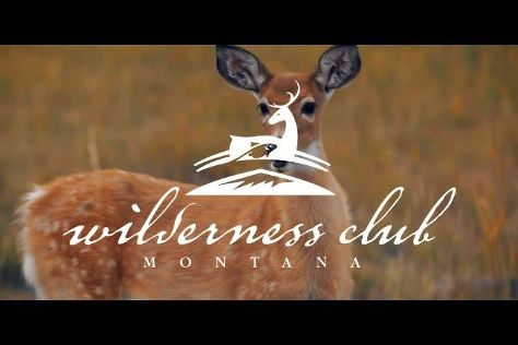 Wilderness Club, Eureka, United States