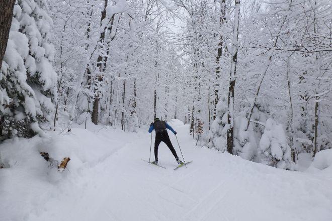 ABR Trails, Ironwood, United States