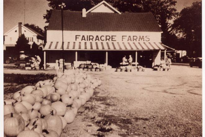 Adams Fairacre Farms, Poughkeepsie, United States