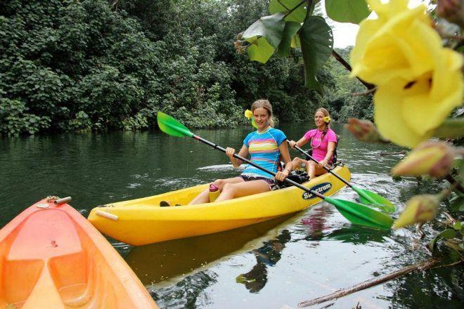 Alii Kayaks, Kapaa, United States