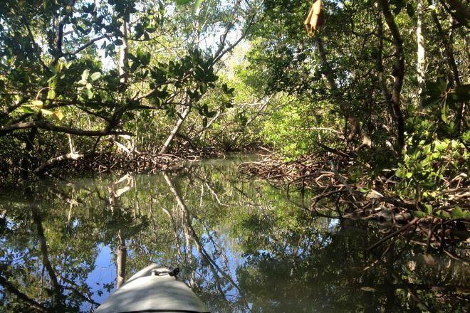 Almost Heaven Kayak Adventures, Sarasota, United States