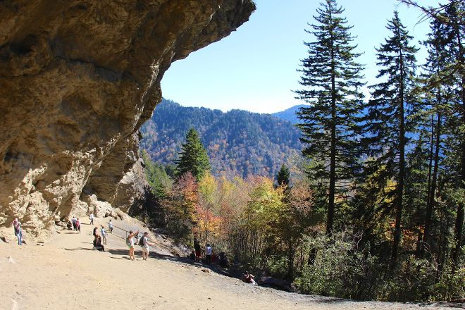 Alum Cave Trail, Great Smoky Mountains National Park, United States