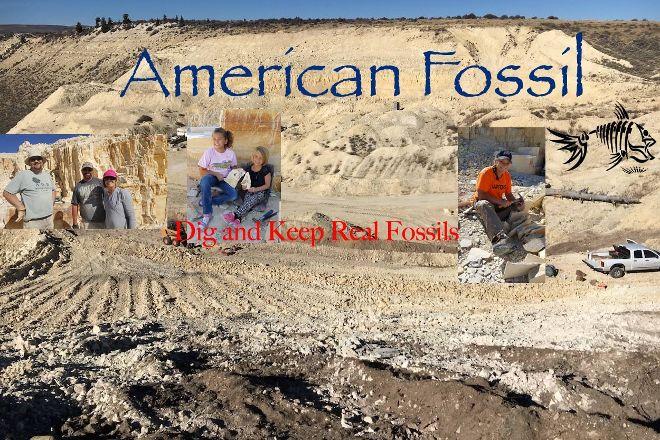 American Fossil, Kemmerer, United States